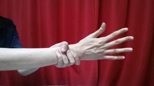 先ほどとほぼ同じ写真。指の長さに今度は着目してみてください。