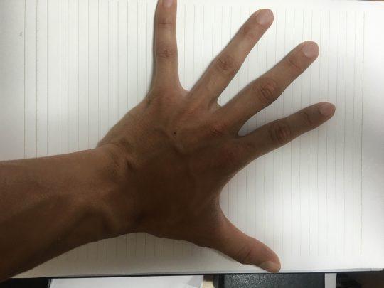 私の「手」。下に敷いてあるのがA4のノートです。身長に比べて手は大きいです。